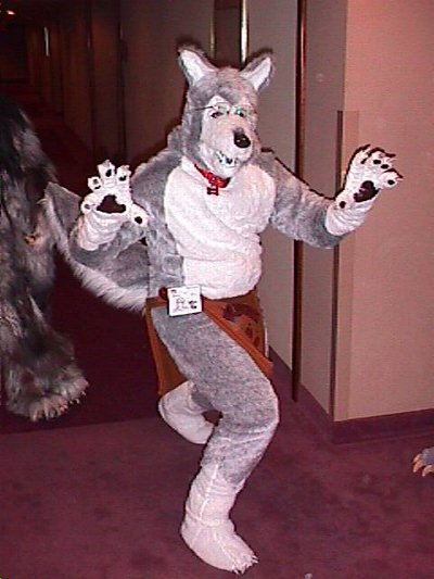 Fursuit_cf9_11.jpg