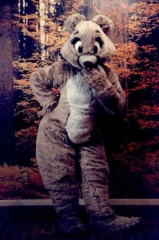 Fursuit Annablle