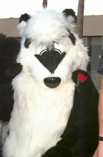 Fursuit_C9-067fs.jpg