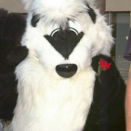 Fursuit C9-067fs
