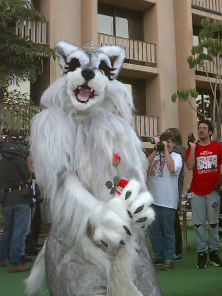 Fursuit_C9-074fs.jpg