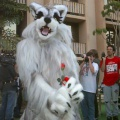 Fursuit C9-074fs