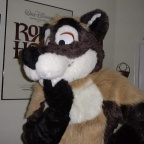 Fursuit Image15