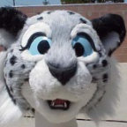 Fursuit WinterWolf NewSnowLeopard Work7