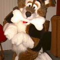 Fursuit abc-Yahooey4