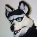 Fursuit another