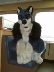 Fursuit ferry02