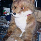 Fursuit fox9