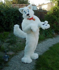 Fursuit hiko07
