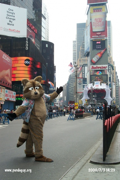 Fursuit_nyc1.jpg