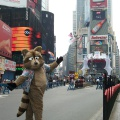 Fursuit nyc1