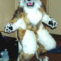 Fursuit tan3