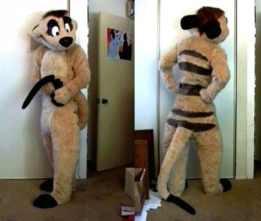 Fursuit timon-c