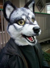Fursuit wolf004