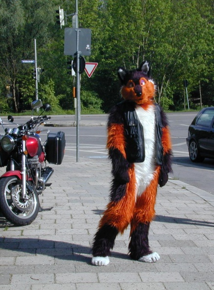 Fursuit_you_didnt_know_my_bike.JPG