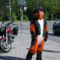 Fursuit you didnt know my bike