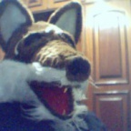 FURSUIT2