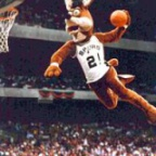 001204 coyote dunk
