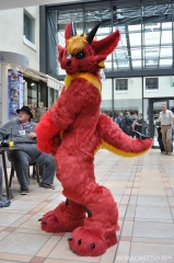 EF22 pictures by Drachetto